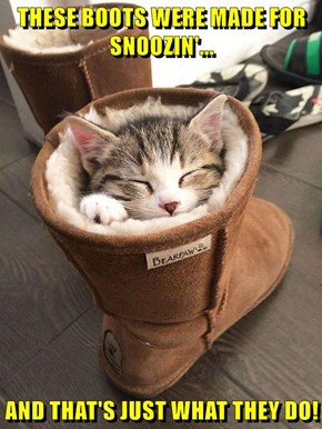 THESE BOOTS WERE MADE FOR SNOOZIN!