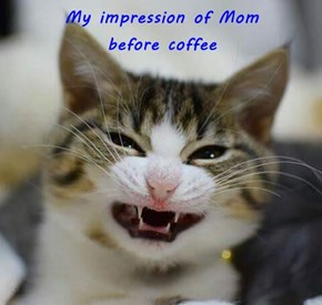 My impression of Mom                                   before coffee