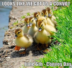 LOOKS LIKE WE GOT US A CONVOY  June 6th - Convoy Day