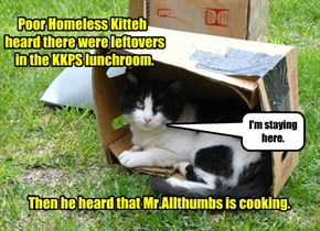 Poor Homeless Kitteh  heard there were leftovers     in the KKPS lunchroom.                  Then he heard that Mr.Allthumbs is cooking.