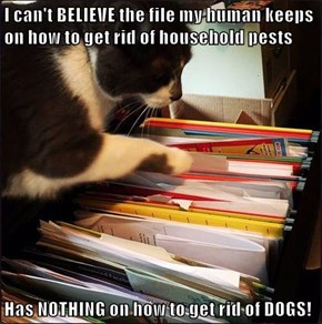 I can't BELIEVE the file my human keeps on how to get rid of household pests  Has NOTHING on how to get rid of DOGS!