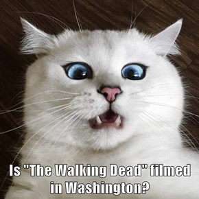 "Is ""The Walking Dead"" filmed     in Washington?"