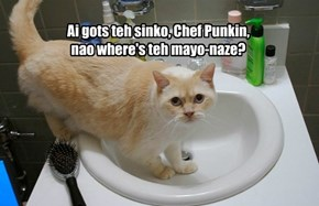 Kitteh Helps Chef Punkin's Fiesta.