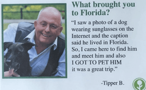 This Fake Florida Guest Book Might Make You Rethink Your Vacation Plans