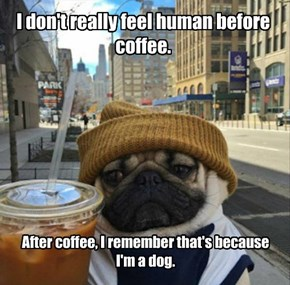 I don't really feel human before coffee.