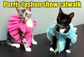 Purris fashun show catwalk