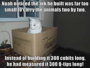 Noah noticed the ark he built was far too small to carry the animals two by two.  Instead of building it 300 cubits long,                                        he had measured it 300 Q-tips long!