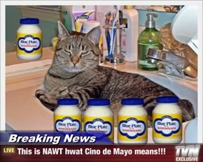Breaking News - This is NAWT hwat Cino de Mayo means!!!