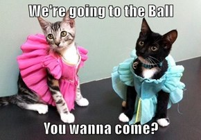 We're going to the Ball  You wanna come?
