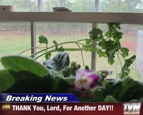 Breaking News - THANK You, Lord, For Another DAY!!