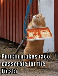 Punkin makes taco casserole for the Fiesta