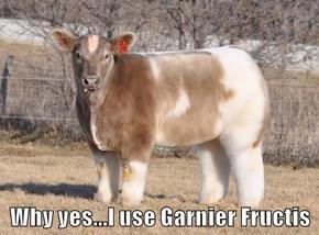 Why yes...I use Garnier Fructis