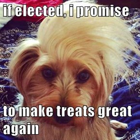 Trump's Dog On The Campaign Trail
