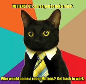 MITTENS!  Of course you're not a robot.                 Who would name a robot Mittens?  Get back to work.