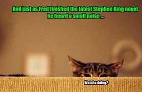 The Cat Snarks At Midnight!