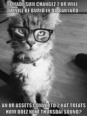 NEVER Let Your Cat Be Your Accountant!