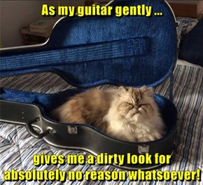 As my guitar gently ...  gives me a dirty look for absolutely no reason whatsoever!