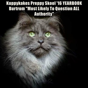 """Kuppykakes Preppy Skool '16 YEARBOOK Burtrom """"Most Likely To Question ALL Authority"""""""