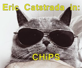 Eric Catstrada in:    CHiPS
