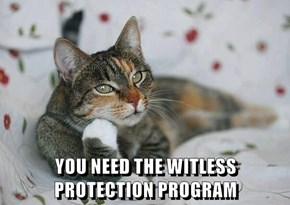 YOU NEED THE WITLESS PROTECTION PROGRAM