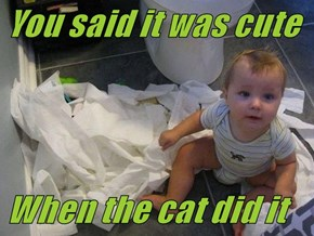You said it was cute  When the cat did it