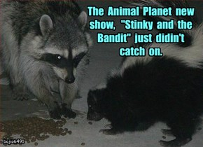 "The  Animal  Planet  new  show,   ""Stinky  and  the  Bandit""  just  didin't  catch  on."