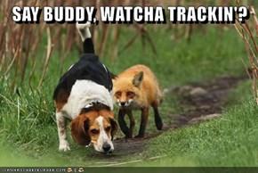 SAY BUDDY, WATCHA TRACKIN'?
