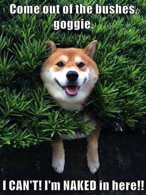 Come out of the bushes, goggie.  I CAN'T! I'm NAKED in here!!