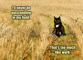 You Will, However, Occasionally Find Me Out Sitting In My Field.