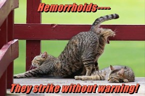 Hemorrhoids----        They strike without warning!