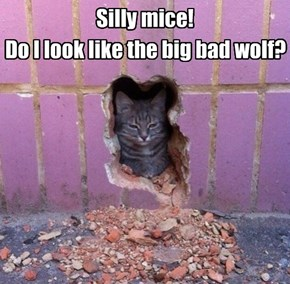 Silly mice!