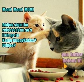 Mom!  Mom!  MOM!    Didjoo sign the  releese form so's  I kin go ta  Kamp KuppyKakes? Didjoo?