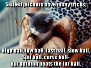 Skilled pitchers have many tricks;  High ball, low ball, fast ball, slow ball,                       Spit ball, curve ball-                                          But nothing beats the fur ball.