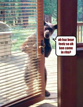 ah haz bear feetz so ah ken come in rite?