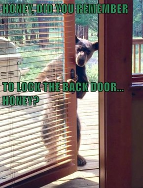 HONEY, DID YOU REMEMBER TO LOCK THE BACK DOOR...                                        HONEY?
