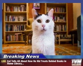 Breaking News - Cat Tells All About How He Hid Treats Behind Books in Home Library...