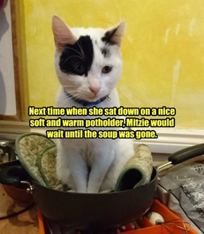 Next time when she sat down on a nice soft and warm potholder, Mitzie would wait until the soup was gone.