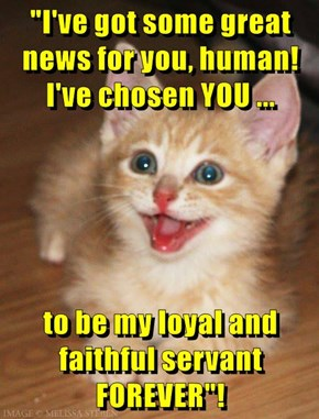 """""""I've got some great news for you, human! I've chosen YOU ...  to be my loyal and faithful servant FOREVER""""!"""