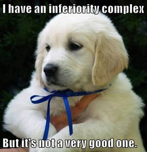 I have an inferiority complex  But it's not a very good one.