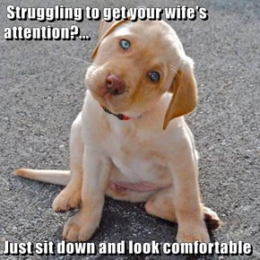 Struggling to get your wife's attention?...  Just sit down and look comfortable