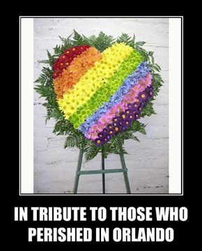 IN TRIBUTE TO THOSE WHO PERISHED IN ORLANDO