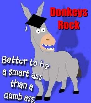 Donkeys Rock