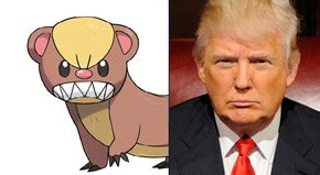 Internet Agrees That Pokémon Sun and Moon's New Illegal Immigrant Pokémon Yungoos Probs Shares a Barber with Donald Trump