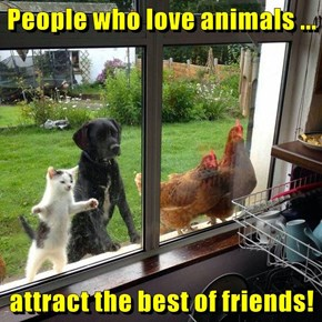 People who love animals ...  attract the best of friends!