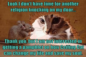Look I don't have time for another religion knocking on my door...  Thank you, but I am not interested in getting a pamphlet on how Ceiling Cat can change my life and save my soul.