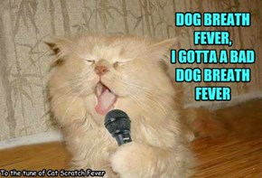 To the tune of Cat Scratch Fever