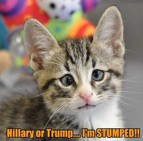 Hillary or Trump.... I'm STUMPED!!