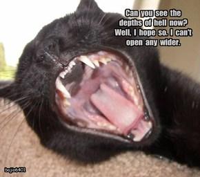 Yawn like hell