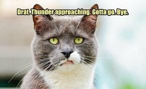 Drat. Thunder approaching. Gotta go. Bye.