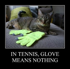 IN TENNIS, GLOVE MEANS NOTHING